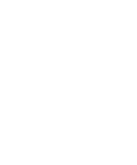 provider-icon.png